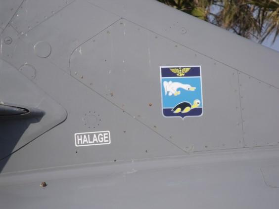 Insigine porté par l'Etendard IV-M n°29.