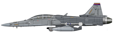 Profil couleur du Northrop YF-20 Tigershark
