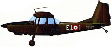 Profil couleur du SIAI-Marchetti SM.1019