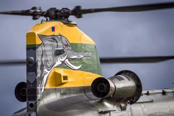 Gros plan sur l'arrière du Chinook HC Mk-4 et son éléphant.
