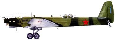 Profil couleur du Tupolev TB-3