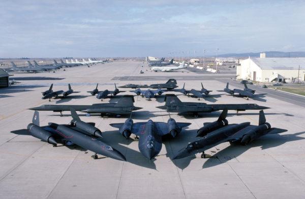 Rien moins que onze Blackbird sur la même photo.