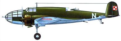 Profil couleur du P.Z.L. P.37 Łoś
