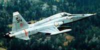 Miniature du Northrop F-5 Freedom Fighter