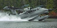 Miniature du Viking Twin Otter 400 / Guardian 400