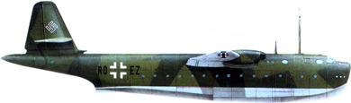 Profil couleur du Blohm und Voss Bv 238