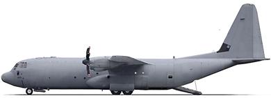 Profil couleur du Lockheed-Martin C-130J Super Hercules