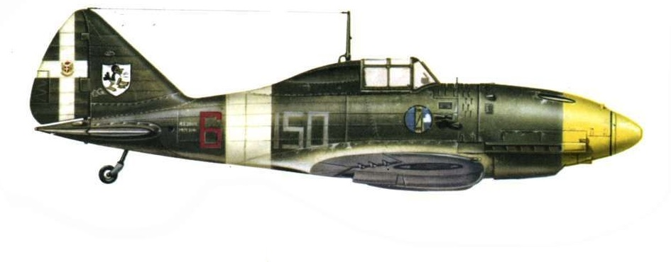 Profil couleur du Reggiane Re.2001 Falco II