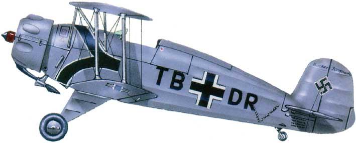 Profil couleur du Bücker Bu 133 Jungmeister