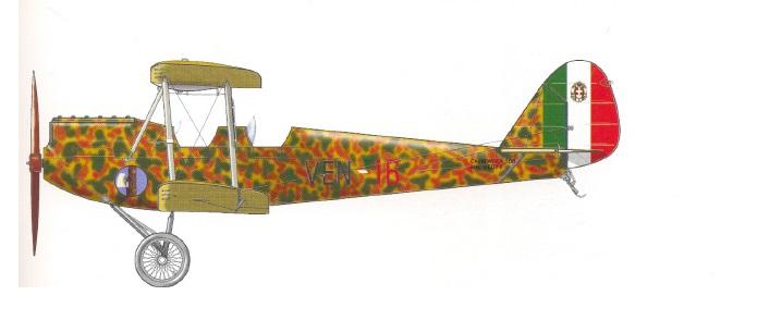 Profil couleur du Caproni Ca.100