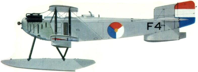Profil couleur du Fairey Type III