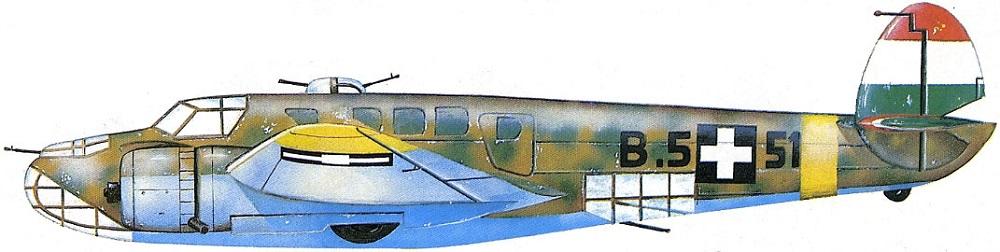 Profil couleur du Caproni Bergamaschi Ca.135