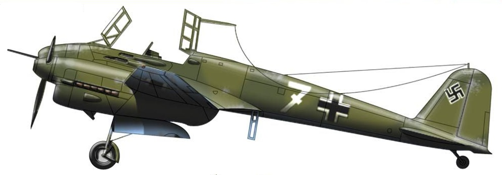 Profil couleur du Focke-Wulf Fw 187 Falke