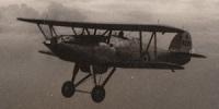 Miniature du Hawker Hartebeest
