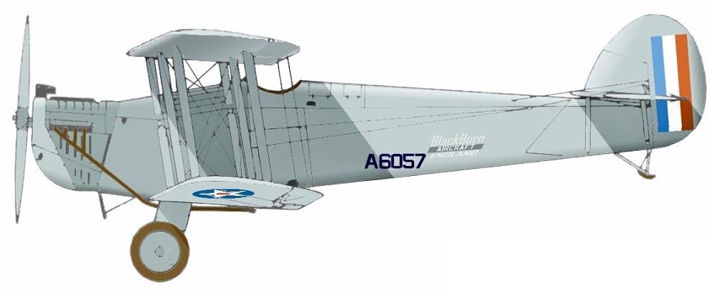 Profil couleur du Blackburn T-1 Swift / T-2 Dart