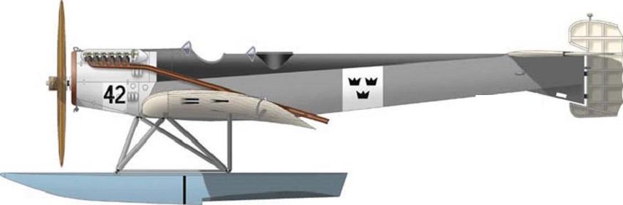 Profil couleur du Svenska Aero S-1 / S-2 Hansa