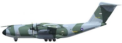 Profil couleur du Airbus Military A400M Atlas