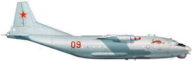 Profil couleur du Antonov An-12  'Cub'