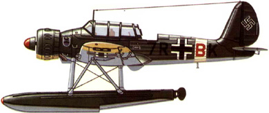 Profil couleur du Arado Ar 196