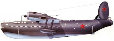 Profil couleur du Beriev Be-6 'Madge'