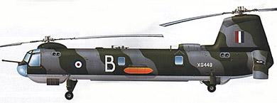 Profil couleur du Bristol Belvedere