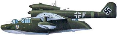 Profil couleur du Blohm und Voss Bv 138