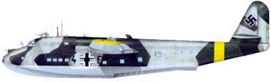 Profil couleur du Blohm und Voss Bv 222 Viking