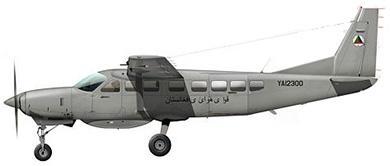 Profil couleur du Cessna C-208 / AC-208 Caravan