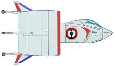 Profil couleur du SNECMA C.450 Coléoptère