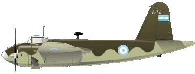 Profil couleur du FMA I.Ae. 24 Calquin
