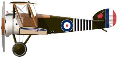 Profil couleur du Sopwith F.1 Camel