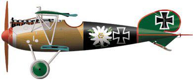 Profil couleur du Albatros D V