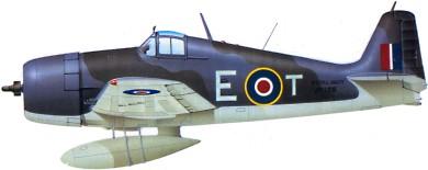Profil couleur du Grumman F6F Hellcat