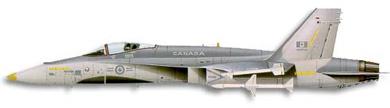 Profil couleur du McDonnell-Douglas F/A-18 Hornet