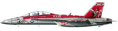 Profil couleur du Boeing F/A-18E/F Super Hornet