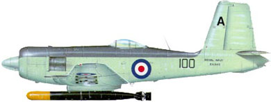 Profil couleur du Blackburn B-37 Firebrand