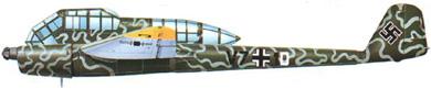 Profil couleur du Focke-Wulf Fw 189 Uhu
