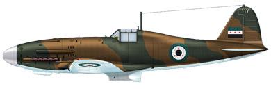 Profil couleur du Fiat G.59