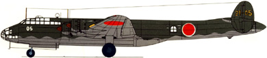 Profil couleur du Nakajima G5N Shinzan 'Liz'