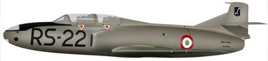 Profil couleur du Fiat G.80/G.82