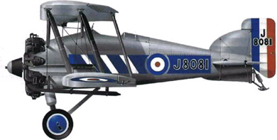 Profil couleur du Gloster Gamecock