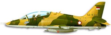 Profil couleur du BAe  Hawk