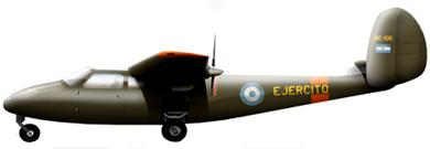 Profil couleur du DINFIA IA 45 Querandi