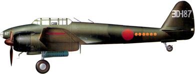 Profil couleur du Nakajima J1N Gekko 'Irving'