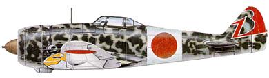 Profil couleur du Nakajima Ki-44 Shoki 'Tojo'