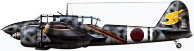 Profil couleur du Kawasaki Ki-45 Toryu 'Nick'