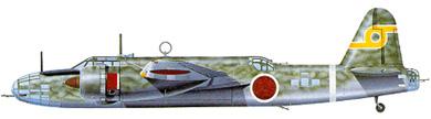 Profil couleur du Nakajima Ki-49 Donryu 'Helen'