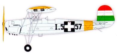 Profil couleur du Repülőgépgyár Levente II