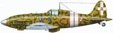 Profil couleur du Macchi MC.202 Folgore
