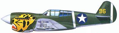Profil couleur du Curtiss P-40 Warhawk